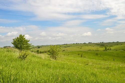 North Missouri Land Auction
