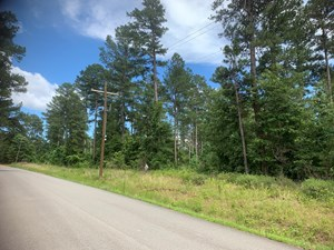 7AC WOODED LOT ON SHULER RD FOR SALE NEAR PARKERS CHAPEL, AR