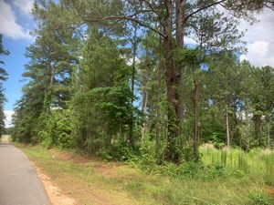 11AC RURAL LOT ON SHULER RD FOR SALE NEAR PARKERS CHAPEL, AR