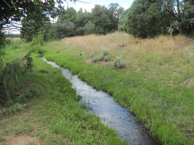 Irrigated Land for Sale near Chama NM, Recreational Property