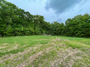 GASCONADE COUNTY - ONLINE AUCTION - 37 AC +/-
