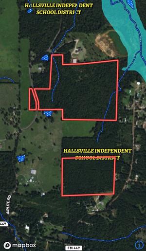 LAND FOR SALE EAST TEXAS HALLSVILLE ISD