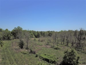LARGE TRACT OF LAND TOUCHING NATIONAL FOREST