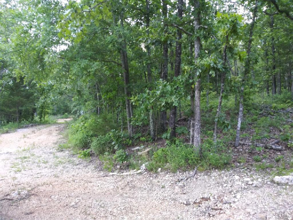Land for Sale in Mammoth Spring, Arkansas
