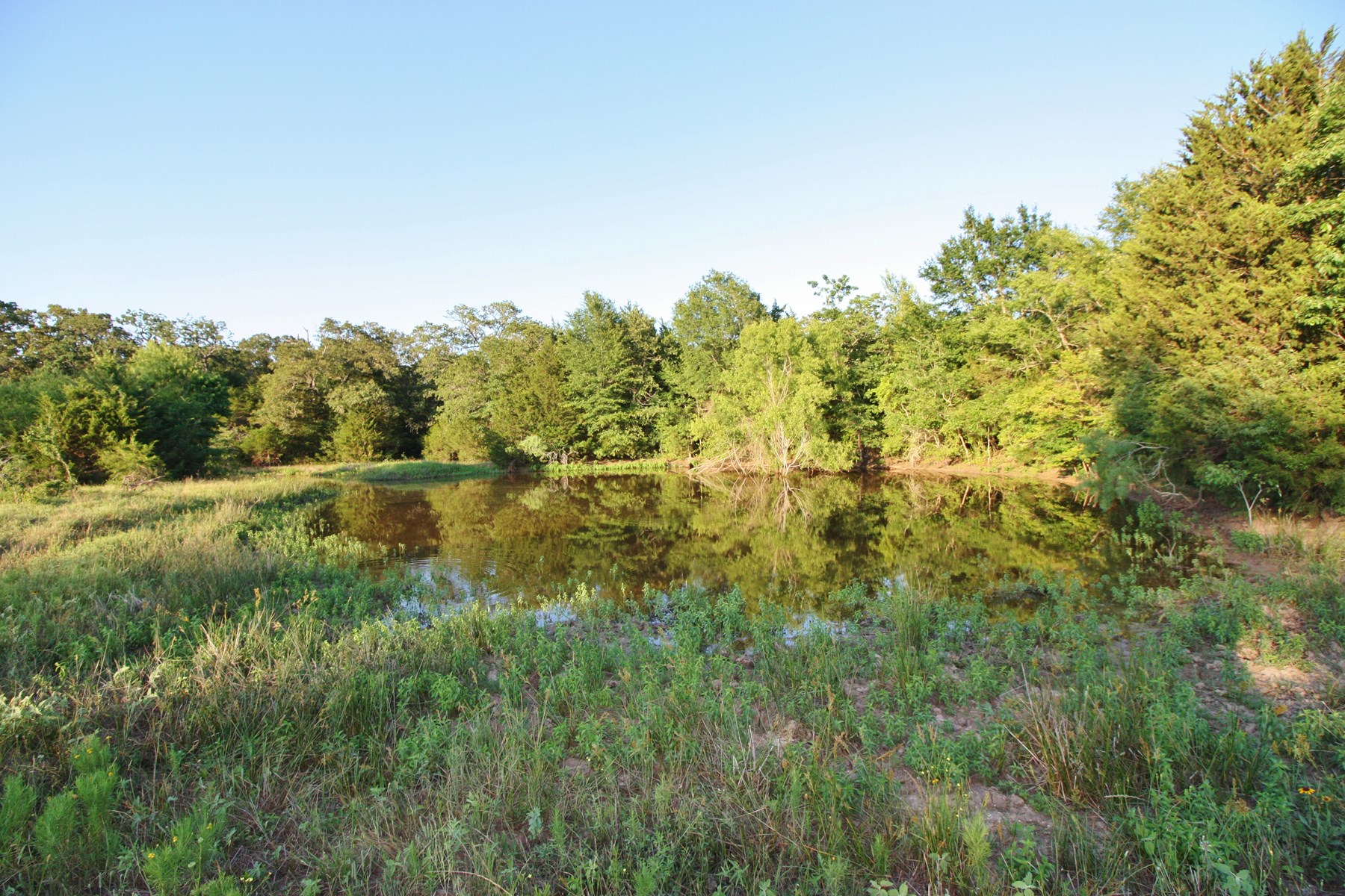 Land For Sale in Limestone County, TX