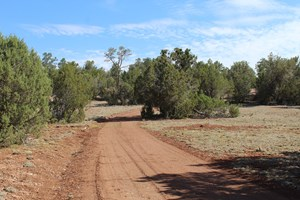 PENDING MOUNTAIN ACREAGE FOR SALE HAS SEPTIC, WATER, ACCESS