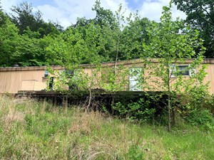 20 ACRES RIGHT AT REMOTE BUFFALO NATIONAL RIVER ACCESS