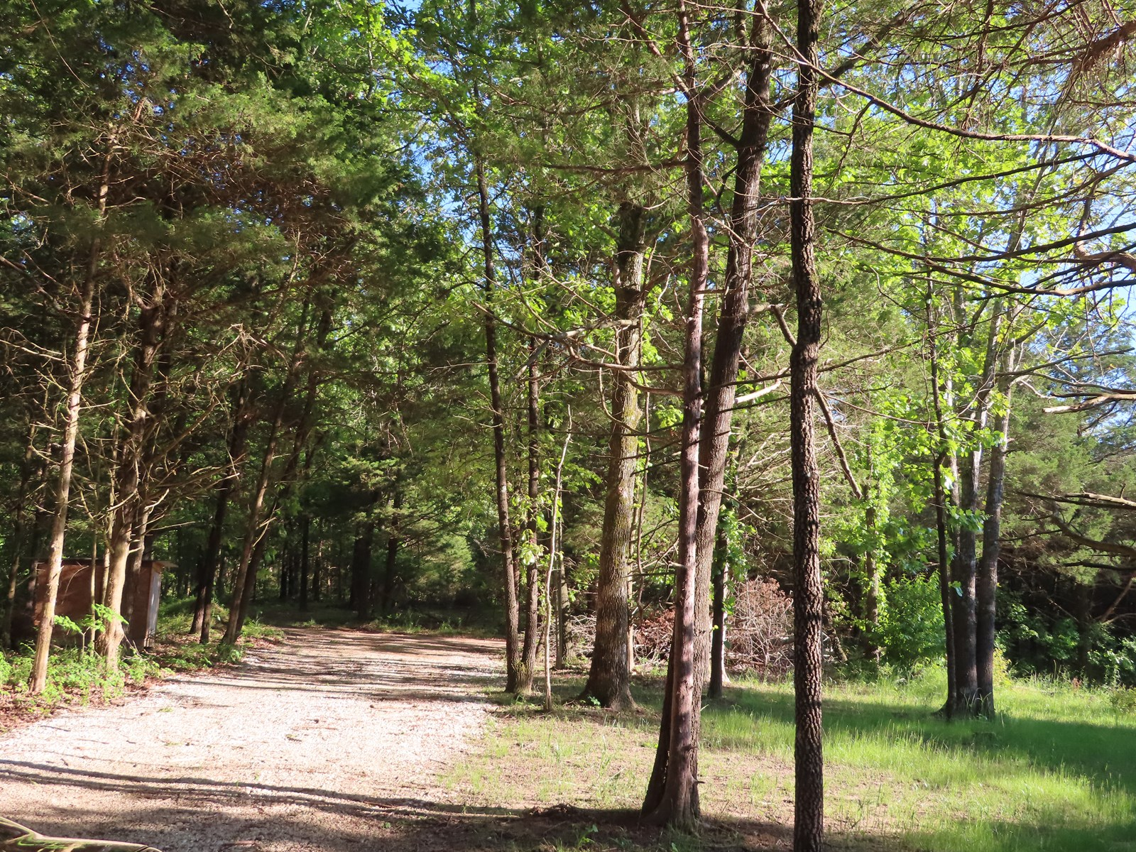 HOME WITH ACREAGE FOR SALE IN AR