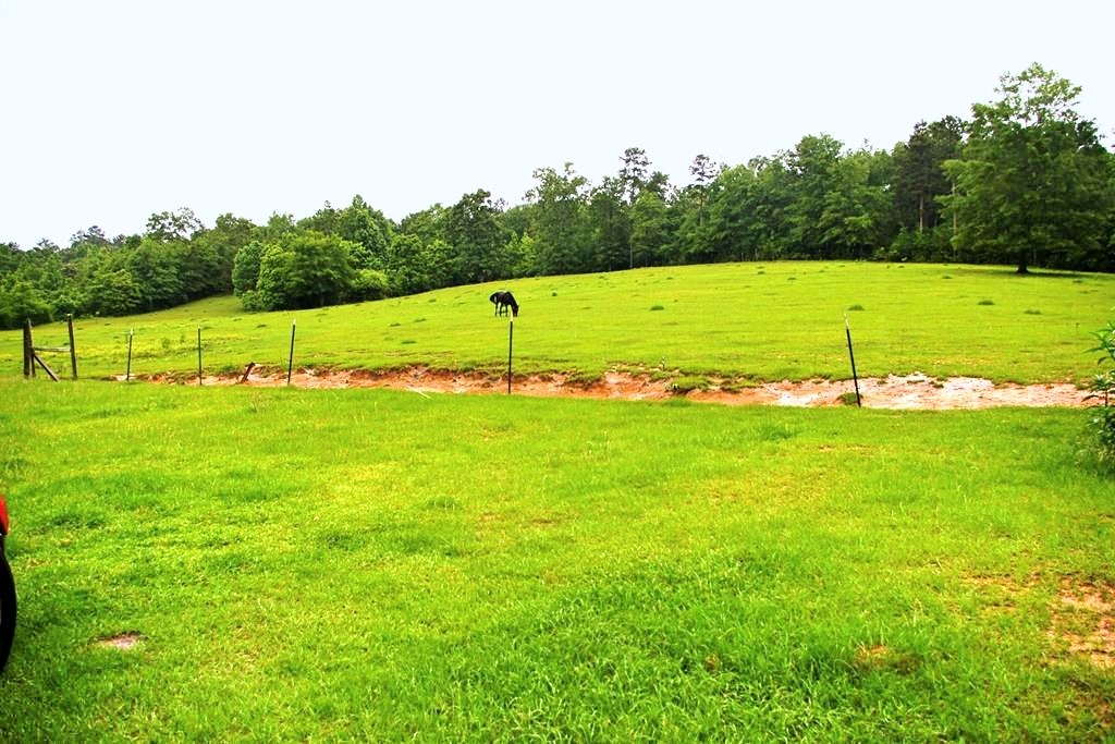 5+ Acres for Sale in North Pike School District in SW MS