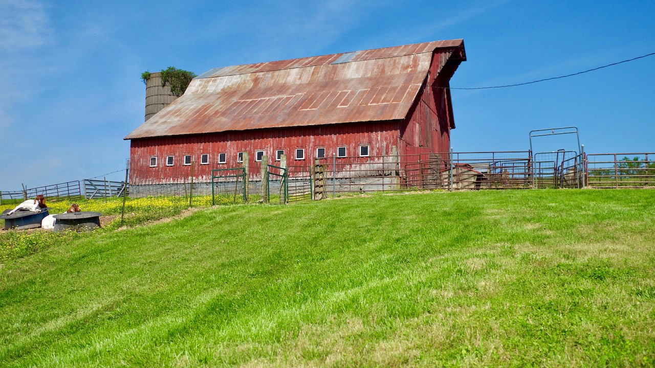 Southern Missouri Farm for Sale in Wright County