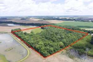 HUNTING LAND FOR SALE NEAR HURRICANE LAKE & CACHE RIVER