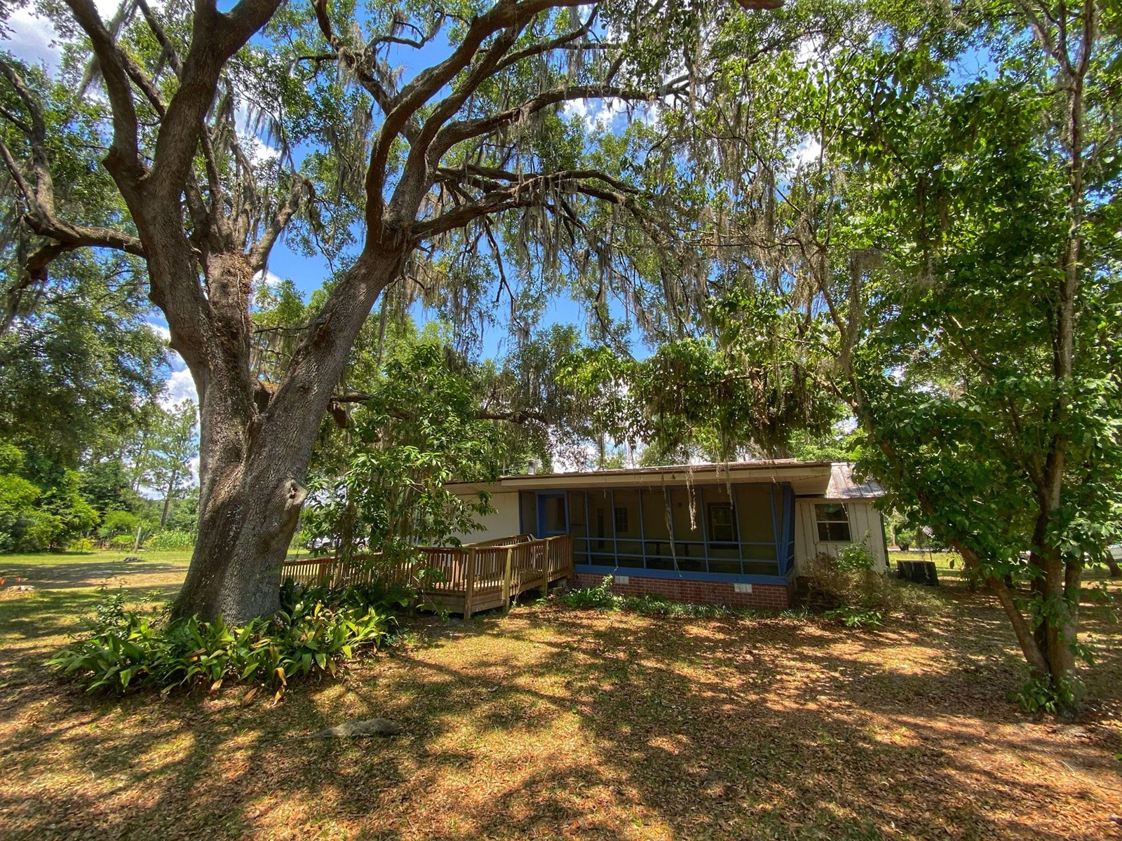 COUNTRY HOME IN SHADY GROVE!