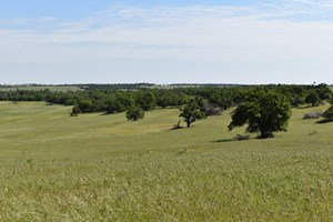 FARM & CATTLE RANCH WITH LAND FOR SALE   CADDO COUNTY, OK