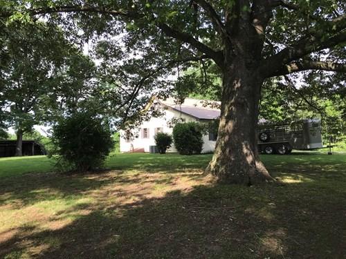 Arkansas Hobby Farm For Sale Near Buffalo National  River
