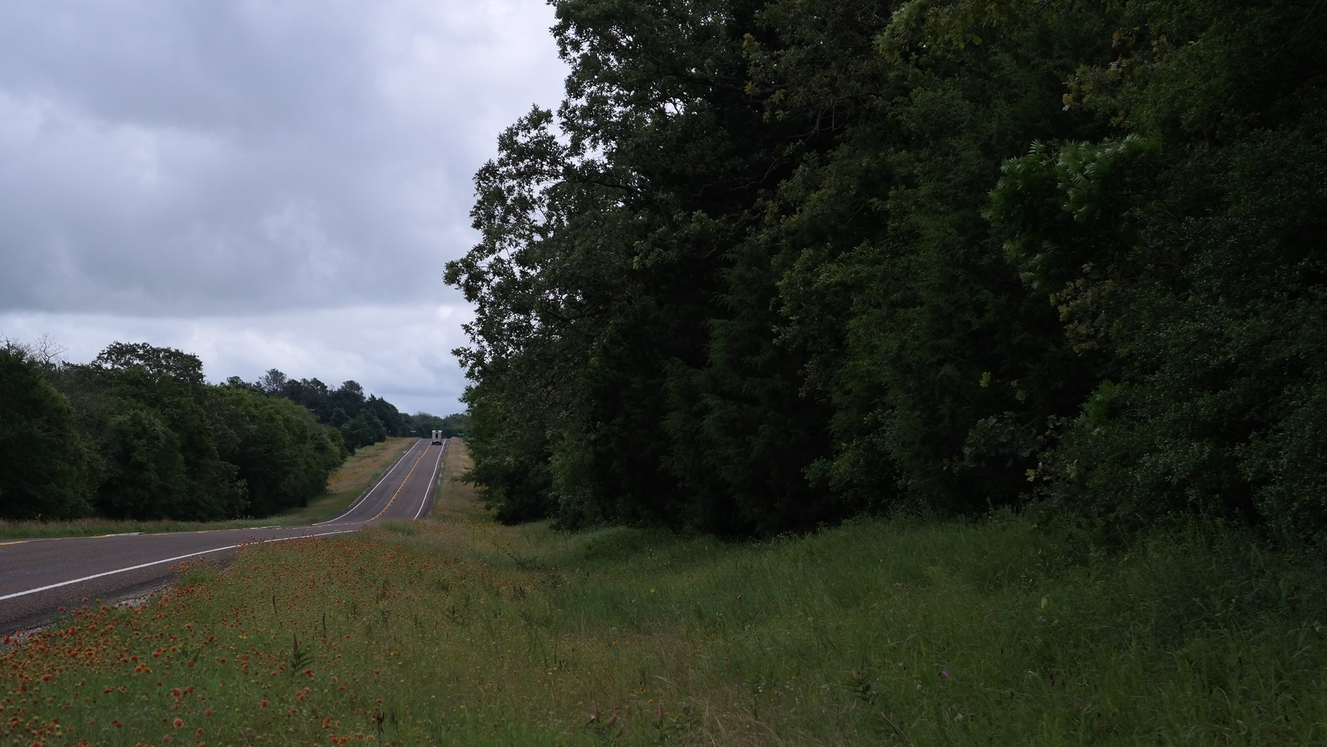 Wooded tract for Sale in Freestone County, Texas
