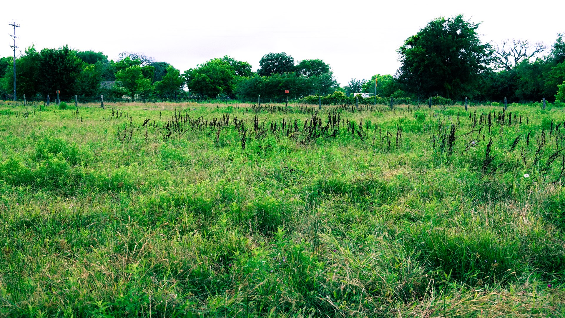 Land for Sale in Freestone County, Texas