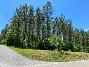 PROPERTY IN TN, INTERNET, WATER, & ELECTRICITY AVAILABLE