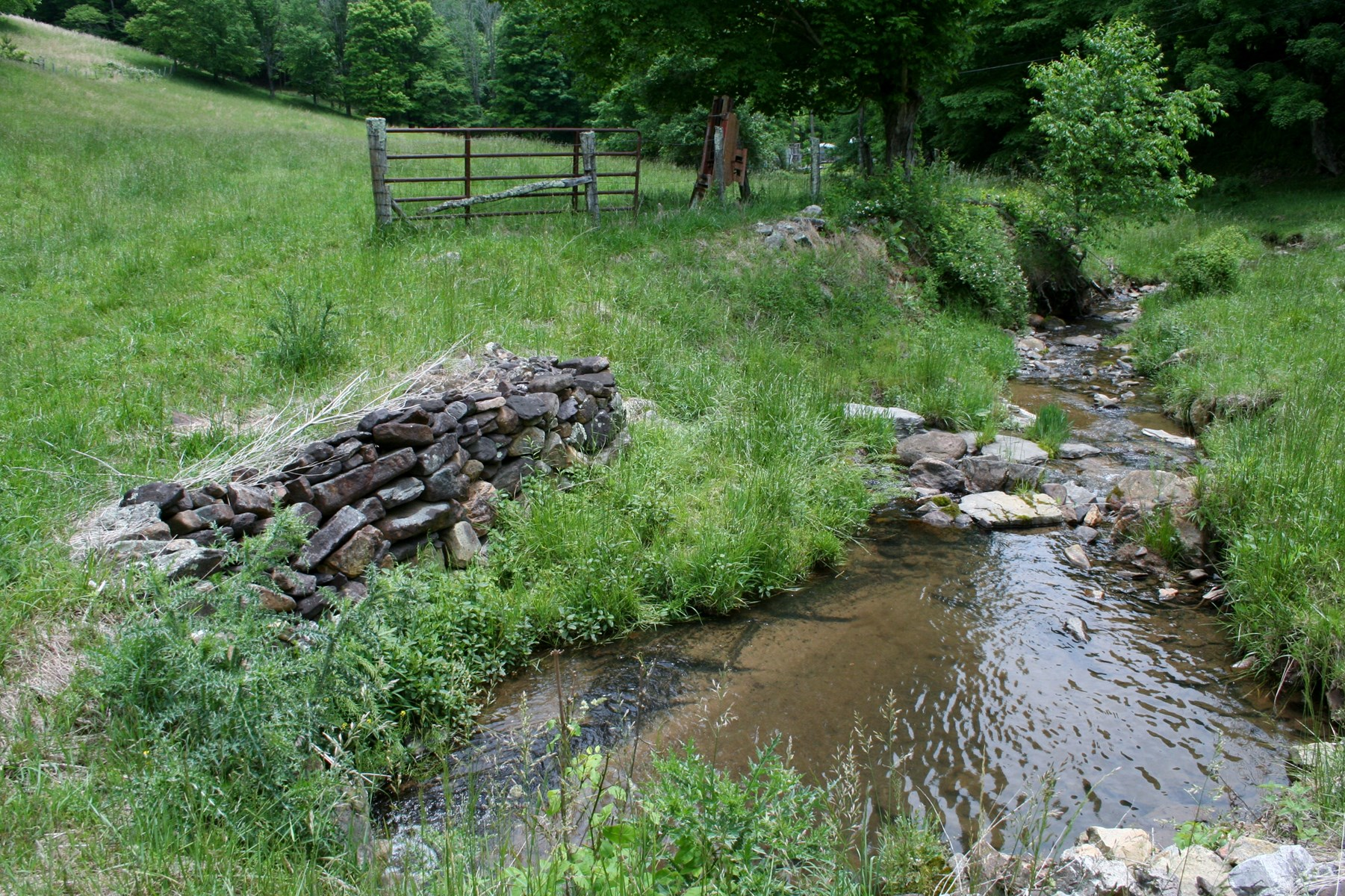 63 acres for sale in Highland County VA
