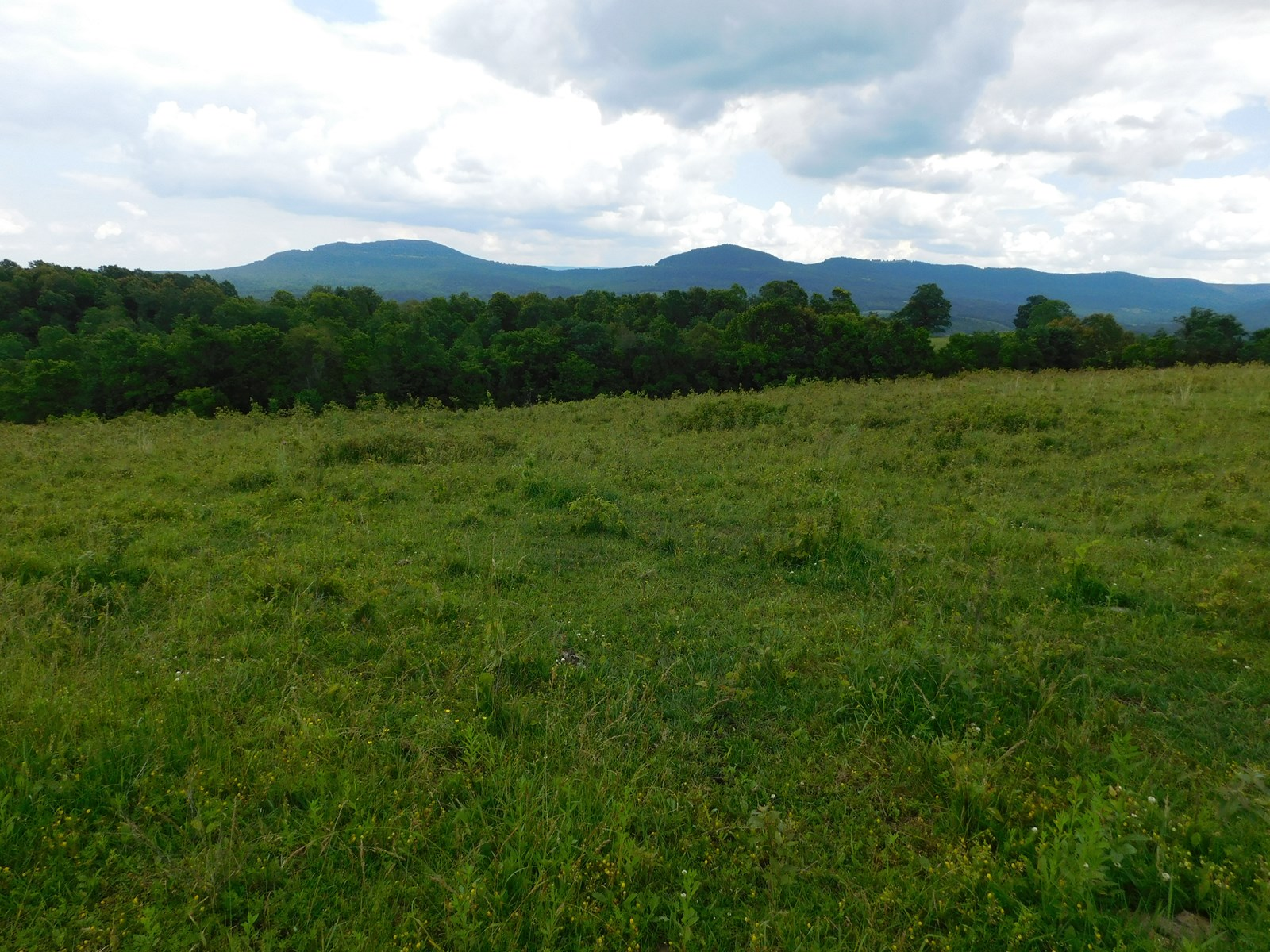 Bldg Site Hunting Recreational Land Newton County For Sale