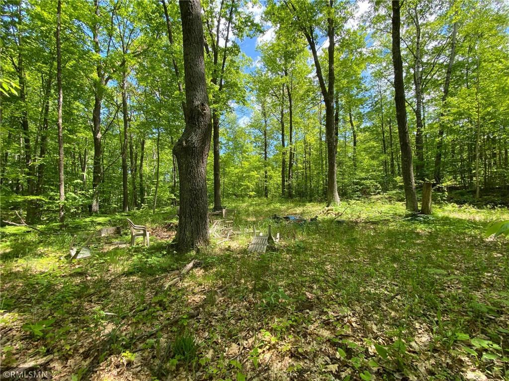 Beautiful Wooded Lot for Sale in Askov, MN