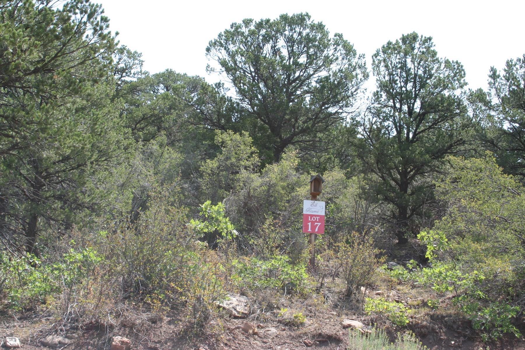 Glade Park Land for Sale