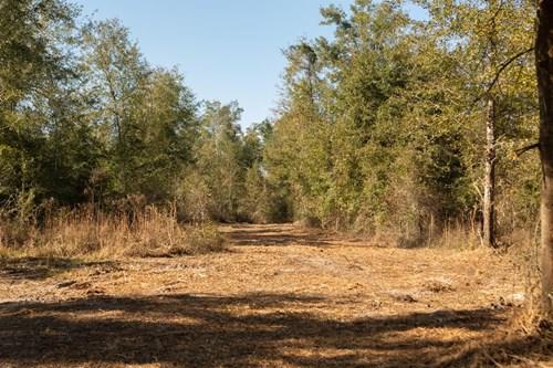 110 Acres Just Outside Live Oak, FL City Limits For Sale