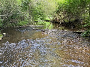 LAND FOR SALE IN TENNESSEE WITH CREEK, LEOMA TENNESSEE