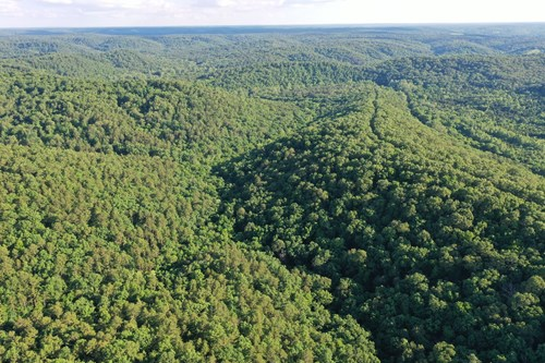 VACANT LAND NEAR CURRENT RIVER & MONTAUK STATE PARK!