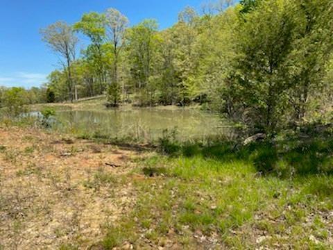40 Acre Parcel For Sale-Madison County, Arkansas