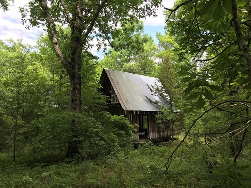 5 Acre Wooded Tract/Old CabinFor Sale Searcy County Arkansas
