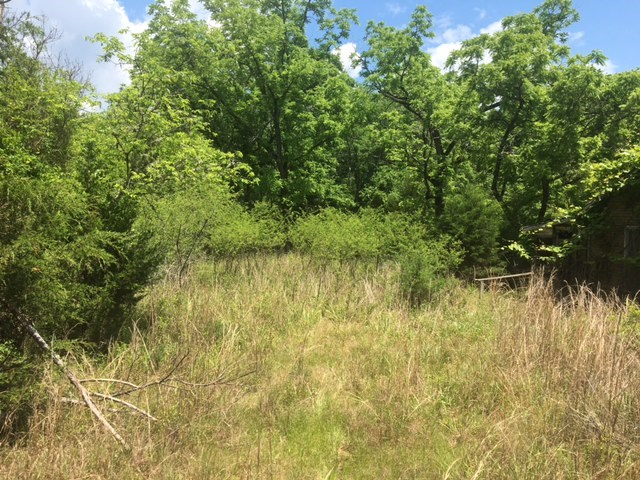 SECLUDED ACREAGE FOR SALE IN CALICO ROCK, ARKANSAS