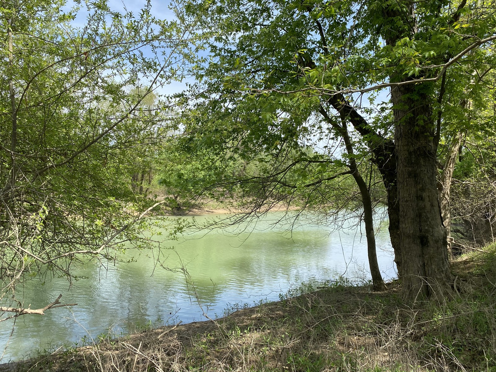 POSSIBLE OWNER FINANCING LAND FOR SALE IN TN ON INDIAN CREEK