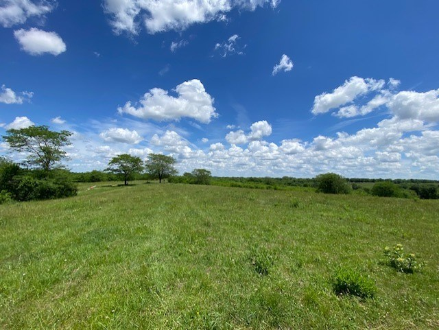 MAYSVILLE MO 20 ACRES FOR SALE
