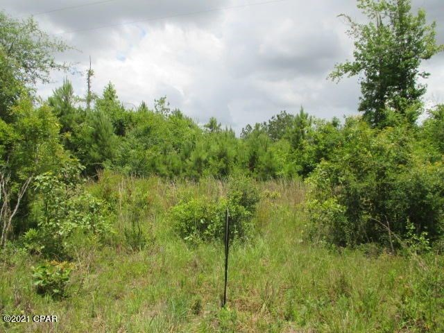 PEACEFUL, QUIET, AND RURAL SPOT NEAR CHIPOLA RIVER