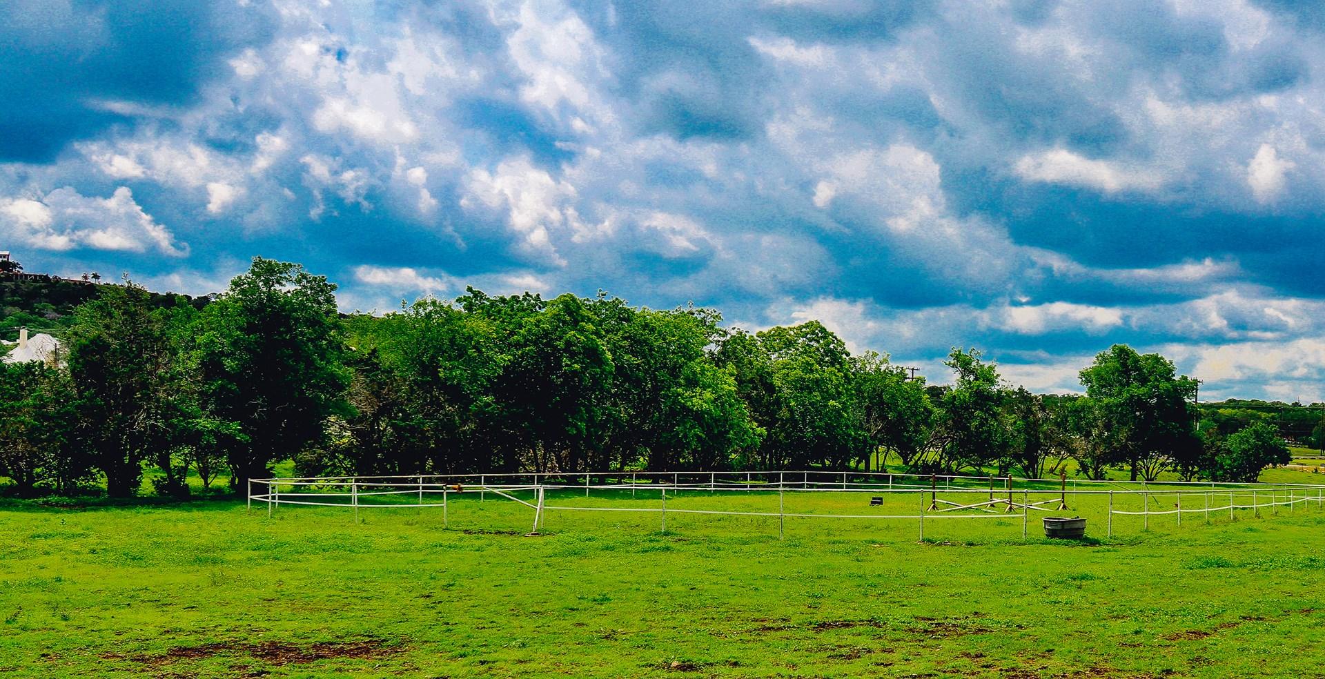 Extraordinary 9 Acre Equine Property