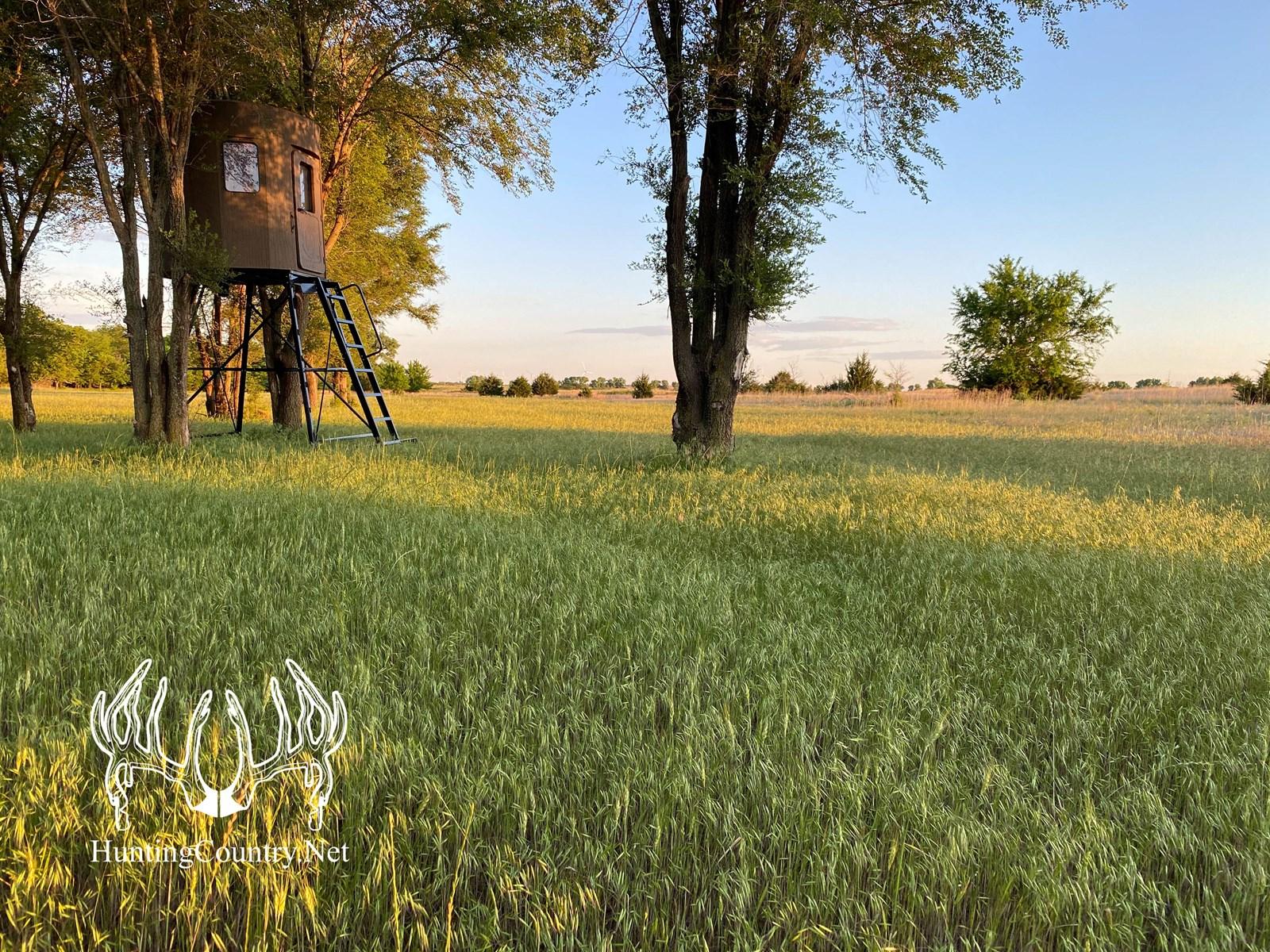 Kingman County, Kansas 275 Acre Land For Sale