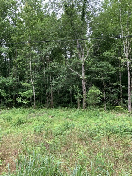Land for Sale Near I-40