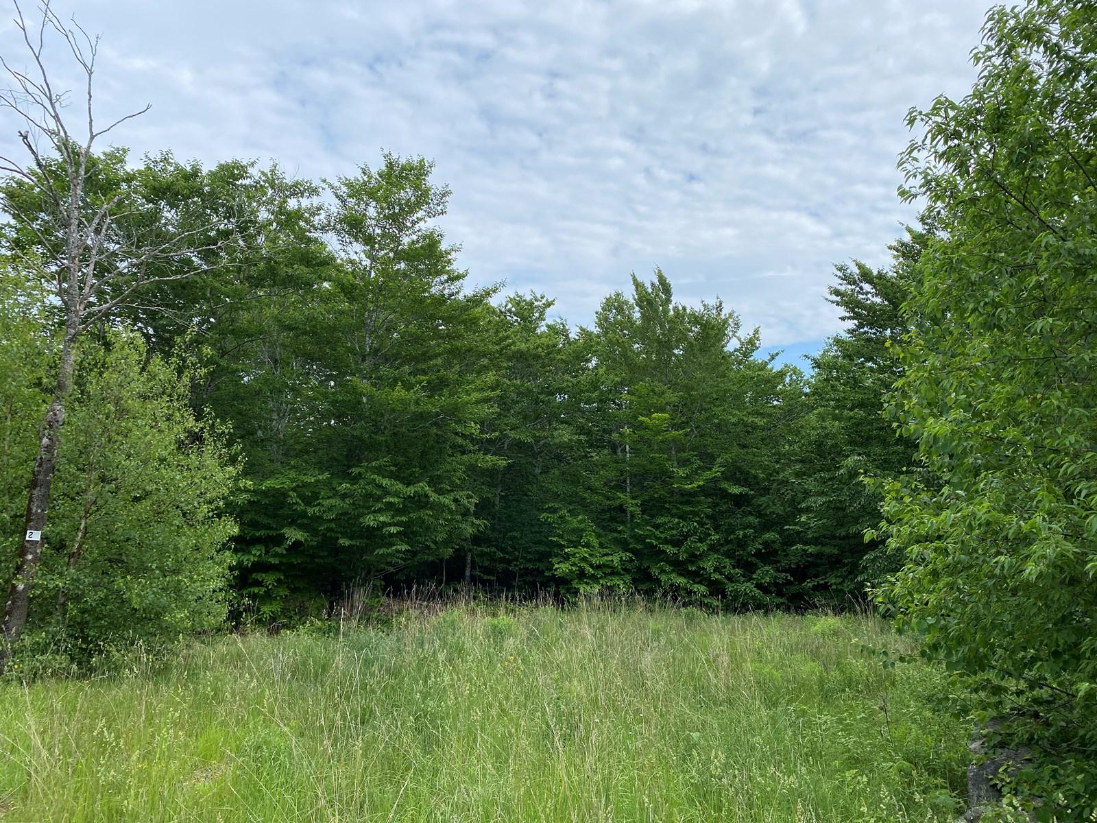 Land in Dedham, Maine