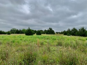 13.33 ACRES - CHANDLER, OK - HUNTING AND/OR HOMESITE!