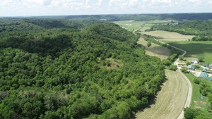 120 ACRES OF TROPHY WHITETAIL GROUND