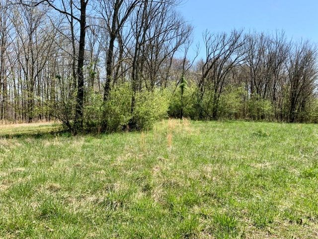 Land for sale Logan Spears Rd Hilham TN