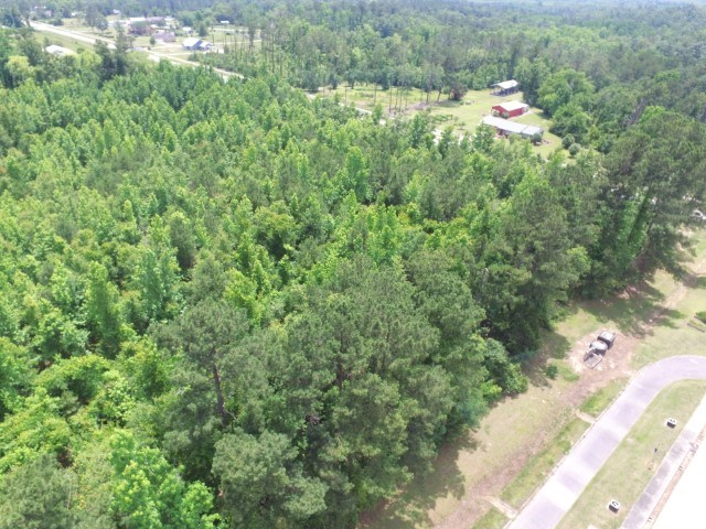 Great in-town acreage in Bristol, FL