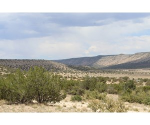 Land with Views for Sale Seligman AZ
