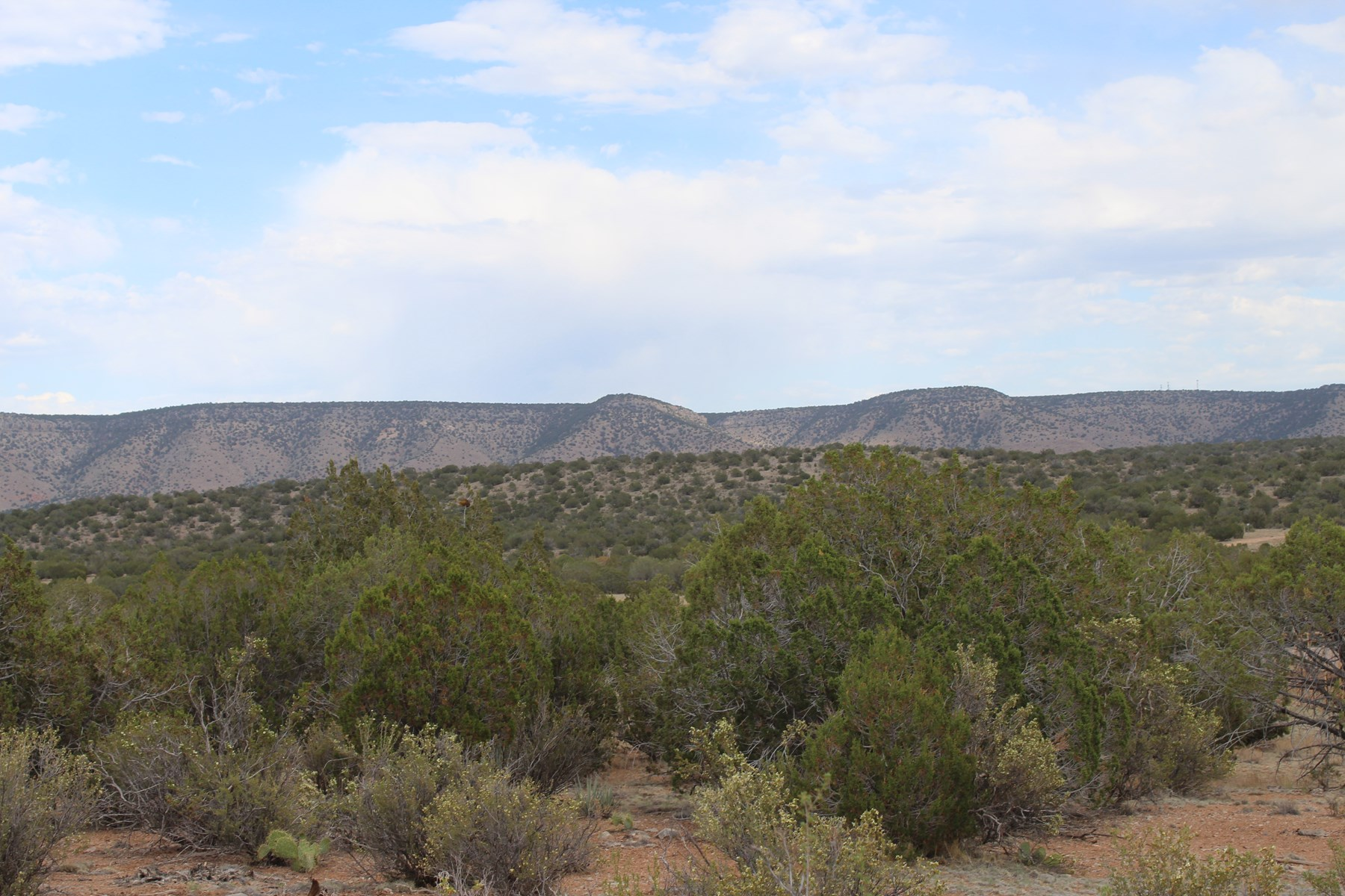 Land Borders State Trust Land for sale in Seligman AZ
