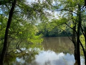 1 ACRE LOT ON THE SUWANNEE RIVER!