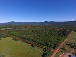 107 ACRE SUGARLOAF MOUNTAIN WOODED HOME SITE - FOR SALE