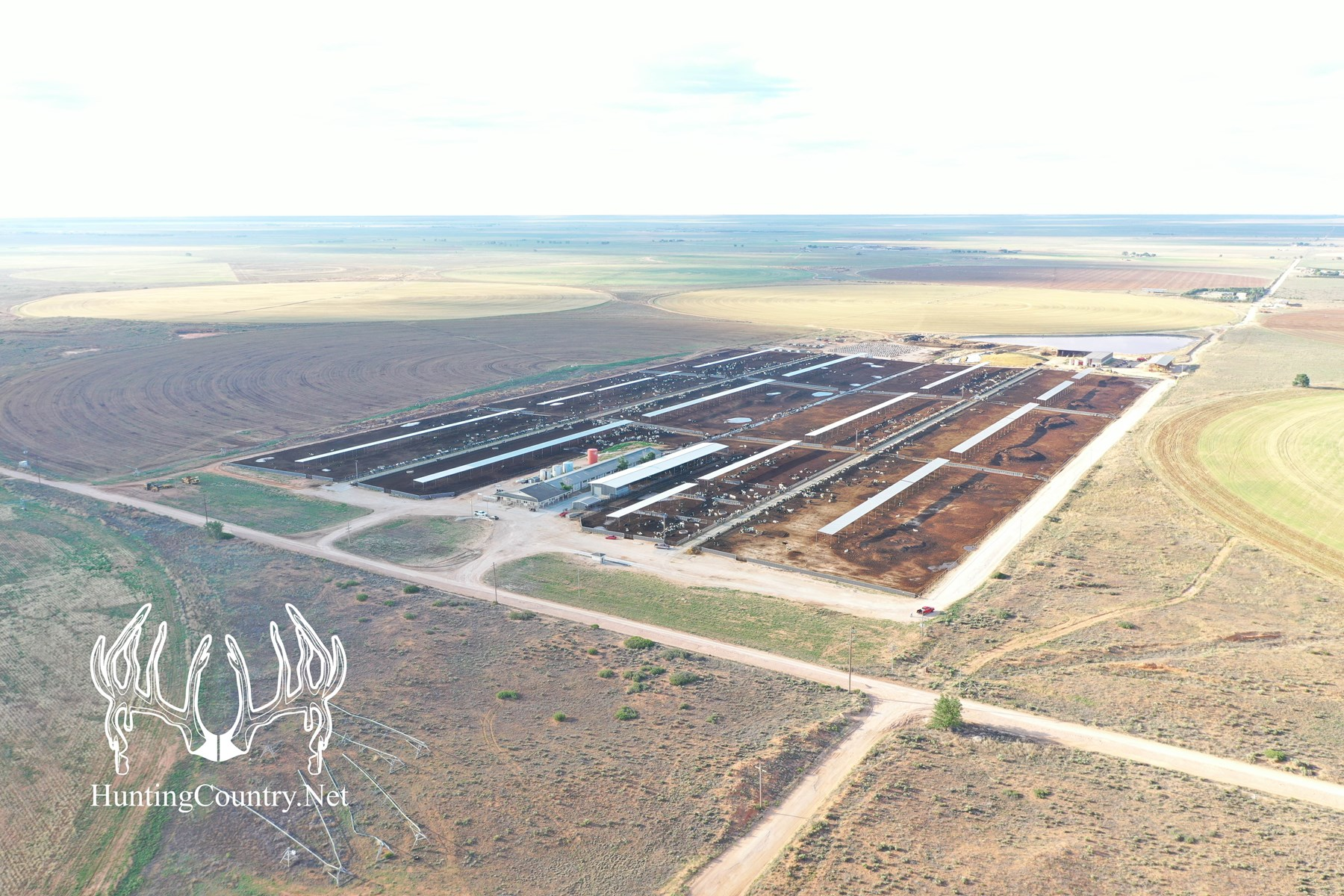 #NM-509 Eastern Dairy Roosevelt County, New Mexico For Sale
