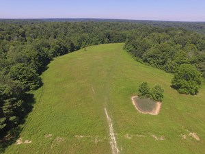 VACANT LAND - PASTURE - HUNTING - BUILDING SITE - LIBERTY KY