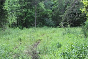 17 ACRES WITH CARGO CONVERSION TRAILER IN EAST TN FOR SALE