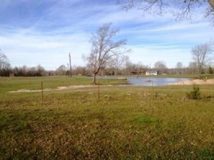 HUNTING/ RECREATION IN BOWIE COUNTY, TEXAS!